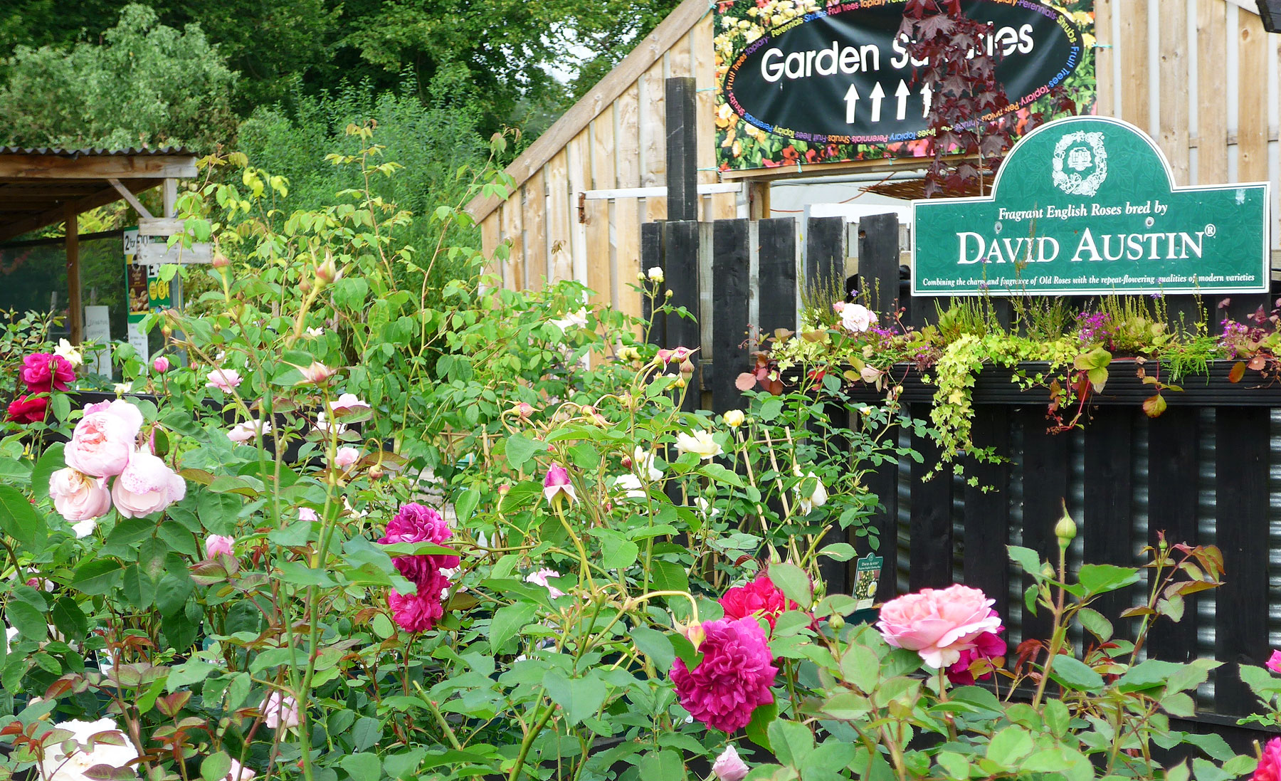 Bennybeg Garden Accessories | Pots and Furniture | Compost ...